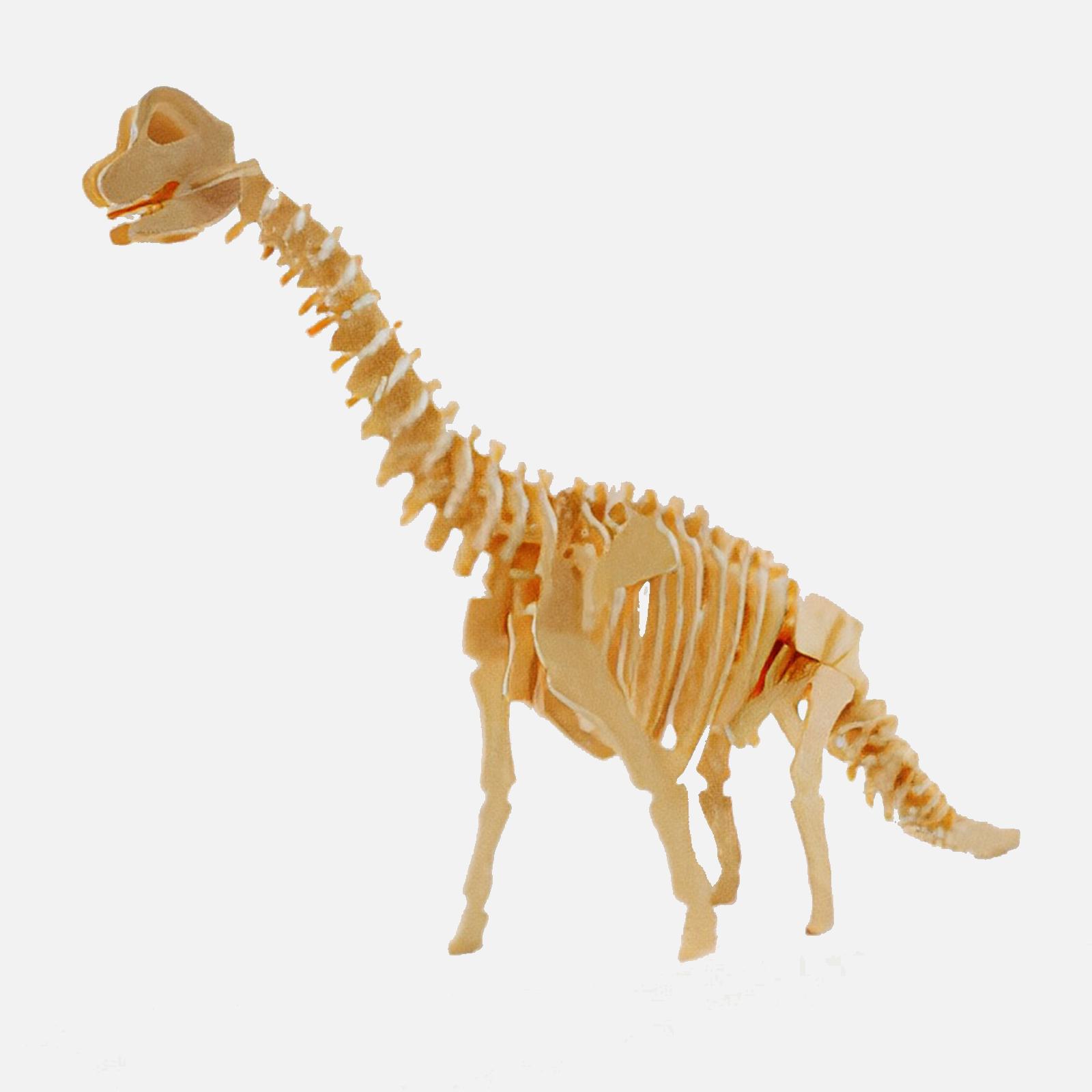 Brachiosaurus 3D Puzzle